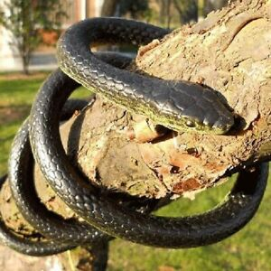 130cm Very Real Rubber Toy Fake Snake Safari Garden Prop Joke Prank Halloween