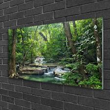 Tableau sur verre Image Impression 100x50 Nature Forêt