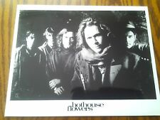 Very Rare Promo Photo B&W Print Hothouse Flowers Studio Shot