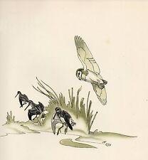 1937 BIRD PRINT ~ BARN OWL & SNIPE