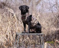 Banded Hybrid Slough Dogstand Marsh Platform Blind Perch Adjustable NEW!