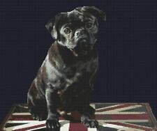"Pug  Dog Complete Counted Cross Stitch Kit 13.5"" x 16"" (34.5 x 40)cm 14 Count"