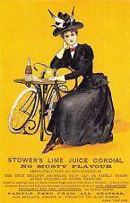 Nostalgia Postcard Stower's Lime Juice Cordial Advertisement #L12