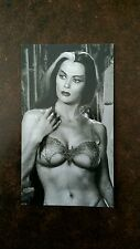 Sexy Lily Munster Magnet, The Munsters Magnet, Lily bikini