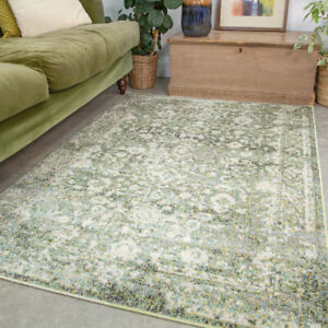 Sage Green Tranistional Rug Small Large Living Room Rugs Long Traditional Runner