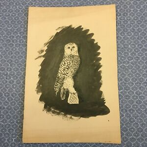 Vintage Antique Original Owl Illustration Drawing by Ruth Stockman