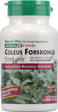 Herbal Actives Coleus Forskohlii by Nature's Plus, 60 vcaps 125 mg