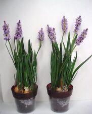 2 12in En pot Mauve Lavande Buissons Fleurs Artificielles En Soie Plantes OFFRE