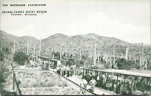Postcard The Watershed Exposition Arizona-Sonora Desert Museum Tucson~4137