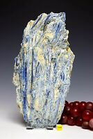 Spectacular Blue Kyanite and Quartz Crystal Cluster - Raw Mineral Specimen 2804g