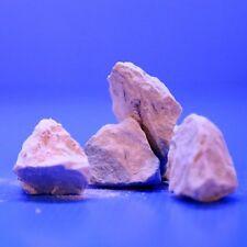 White Mineral Stone 100g Montmorillonite Rock - Red Bee Shrimp Aquarium Fish CRS