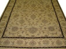 Hand Knotted Floral and Vines Design Area Rug