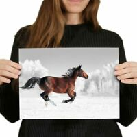 A4 - Galloping Brown Horse Horses Poster 29.7X21cm280gsm #3965