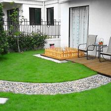 1000Pcs Green Grass Tall Fescue Festuca Arundinacea Lawn Field Turf Seeds