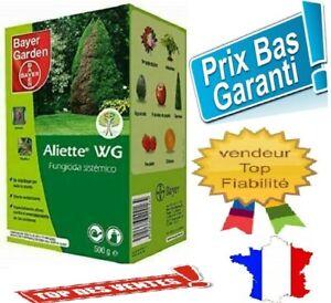 Aliette Bayer Fongicide préventif-curatif 500G POUR GAZON LIVRAISON RAPIDE