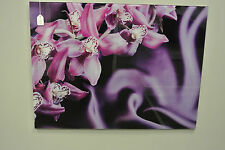 Violet Silk / Purple Glass Wall Art / Glass Image / Tempered Glass Picture