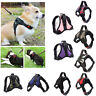 Dog Harness Collar Lead Adjustable Padded Water Resistant Vest for Large Medium