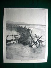 WW1 Guerra Mondiale 1918 Reticolati sul Piave nel 1918