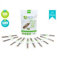 10 Olive Miswak Sticks | Eco Friendly 100% Natural Toothbrush | Zaitoon Meswak