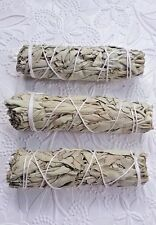White Sage Smudge Sticks 4 Inches Set of 3 Remove Negativity Cleansing  Wicca