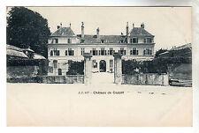 Chateau De Coppet - Photo Postcard c1902