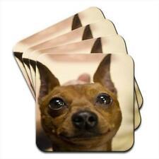 Doberman Dog Puppy Set of 4 Coasters