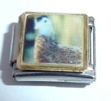 GAME BIRD 9mm Italian Charm - fits ALL Classic Starter Bracelets BR1 - Hunting