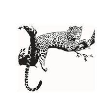 PVC Animal Wild Zoo Removable Cheetahs Wall Sticker Home Decor Living bedro B2D3