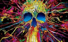 "Multi Coloured Graffiti Skull Large 30"" X 20"" Canvas Print"