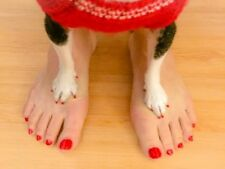 NAIL POLISH FOR PETS & KIDS, Non-TOXIC, ODORLESS,  DRIES IN 40 sec, COLOR-RED