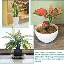Fensterboxen Pflanzentablett Gartenpflanze Untertasse Tropfschale Transparent