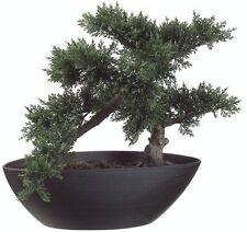 "14.5"" ARTIFICIAL BONSAI TREE PLANT TOPIARY IN OUTDOOR PATIO DECK ARRANGEMENT IVY"
