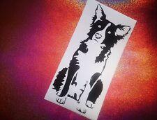 BORDER COLLIE dog lover cool car window bumper vinyl sticker/decal