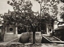 1906 Vintage CHINA MENG CHENG Emperor Memorial Architecture Photo Art BOERSCHMAN