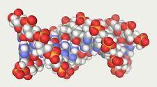 Tetrasodium EDTA chelate 10 Lb Value Free Shipping Included