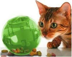 PETSAFE MULTI VET SLIMCAT CAT TOY BALL FEEDER SLIM CAT TOY - choose color