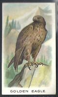 WILLS OTHER OVERSEAS-ANIMALS & BIRDS (WITH SERIES TITLE)- GOLDEN EAGLE
