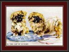 English Print Pekingese Puppy Dog Art Picture