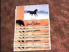 BLACK STALLION LOBBY CARD SET '79 VINTAGE HORSE
