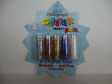 EXTRA FINE HOLOGRAPH GLITTER PACK -- 5 COLORS -- SULYN