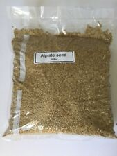 Alpiste Seed Canary Seed Birds Seeds (5Lbs)canaries (Plain Alpiste) Wholesale