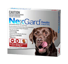 NexGard Flea and Tick Treatment for Extra Large Dogs 25.1kg-50kg