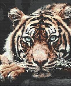 BEAUTIFUL TIGER HEAD - COUNTED CROSS STITCH CHART