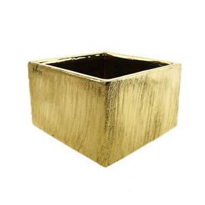 Scratched Wide Square Ceramic Pot, Gold, 6-Inch