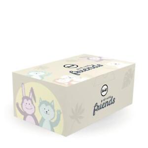 STEIFF Teddy Bear Gift box EAN 927683 20cm Grey Soft & Cuddly Friends New