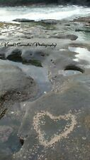 Digital Photograph Wallpaper Image Picture Free Delivery - Rockpool Love
