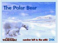 "The Polar Bear postcard, a Vulnerable Animal alert by ""ToSaveThePlanet"""