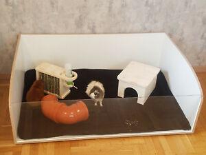 Stall Gehege für Meerschweinchen 80015