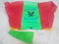 """2 PACK Midi Kite-Fishing Caught In Flight 41""""and line flag"""