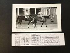 RUFFIAN Photo Horse Racing lifetime lines